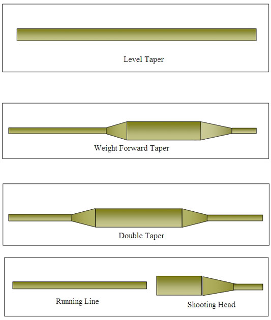 Fly Line tapers