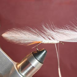 Step 6 Tying the Gray Ghost