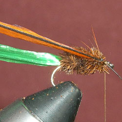 Trimed with the hackle ready to be wound