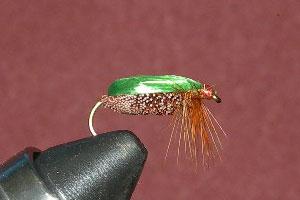 Beetle ( Green )